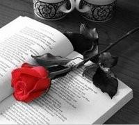 rosa_y_libro[1].jpg